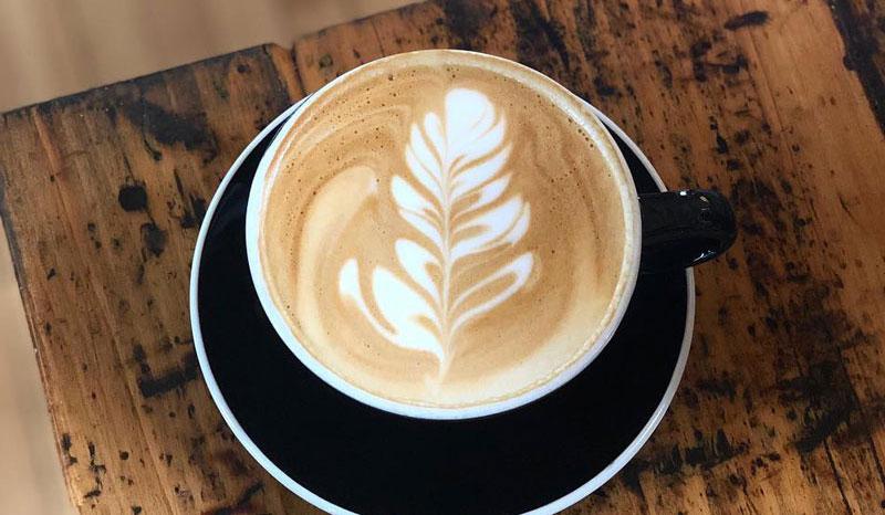 Anodyne-Coffee-Roasting-Company-800x466